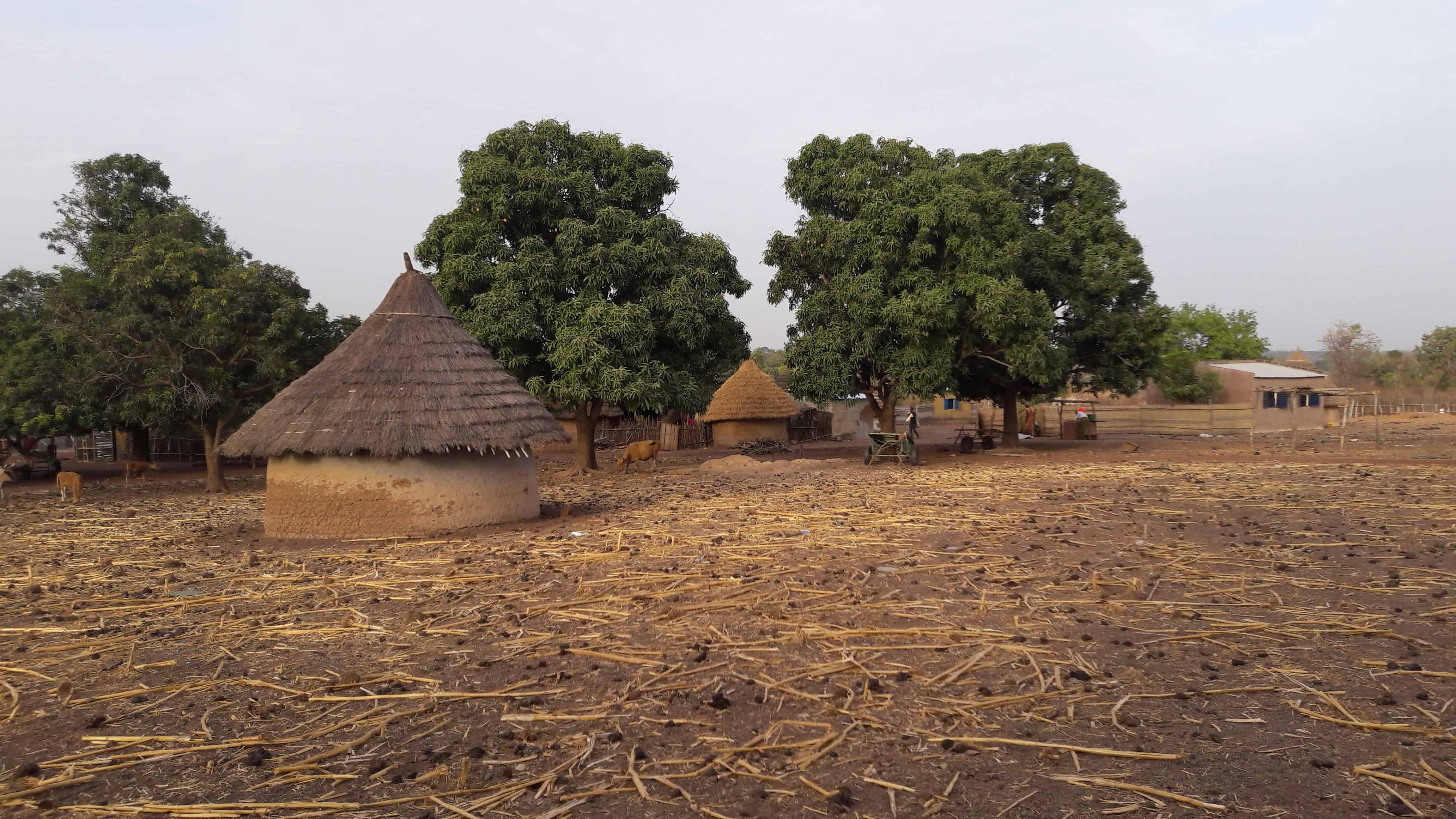 World Vision Kedougou MADE BLUE update